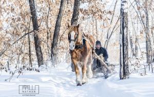 【哈尔滨图片】一路向东,穿越冰雪 -- 东极抚远+哈尔滨+吉林雾凇 秘境之旅