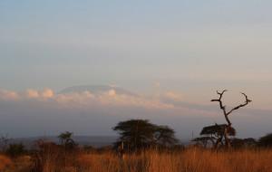【坦桑尼亚图片】一个不会照相的女子的肯尼亚、坦桑尼亚之旅
