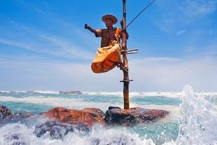 斯里蘭卡圖片