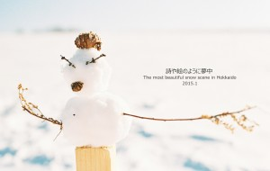 【北海道图片】【蜂首纪念】如诗如画  如痴如醉  寻觅最美北海道(史上最全攻略,图多慎入)