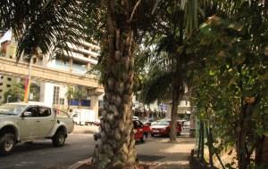 【新山图片】这是我们从上海前往吉隆坡-槟城-新山的旅程。