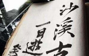 【太仓图片】#花样游记大赛#又是清明雨上,折菊寄到你身旁。(沙溪古镇)