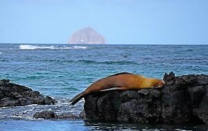 【厄瓜多尔图片】岛海山林之国—厄瓜多尔之加拉帕戈斯群岛游记
