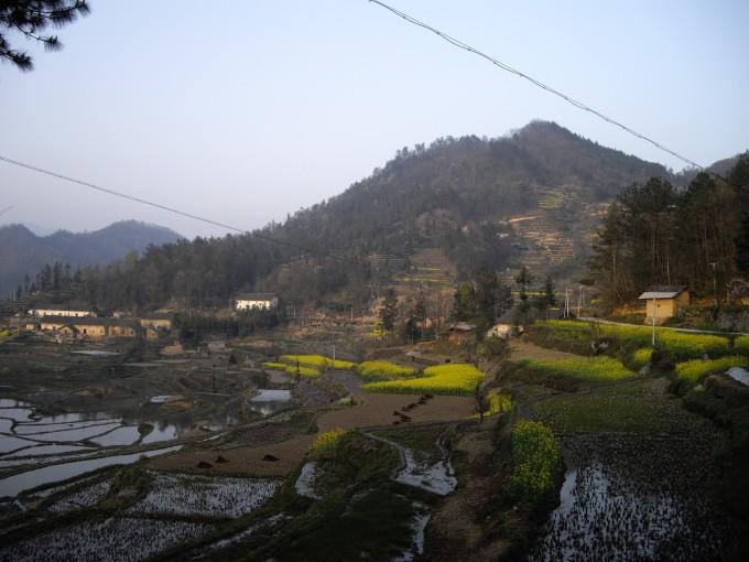 农村山上风景照