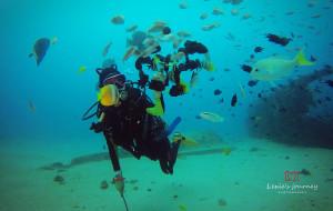 【海豚湾图片】PG(Puerto Galera)菲律宾最富有情趣的潜水基地之一