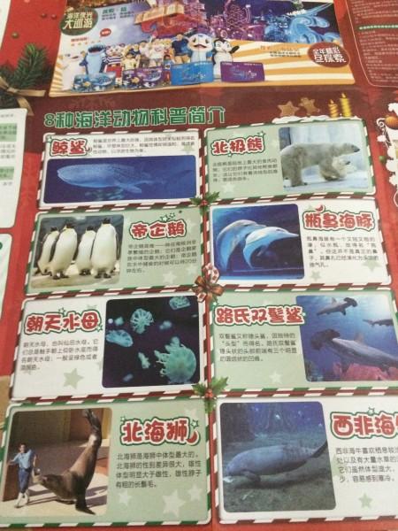 长隆海洋王国地图介绍
