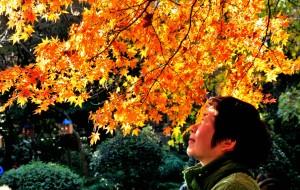 【南京图片】深秋游南京,赏枫怀古