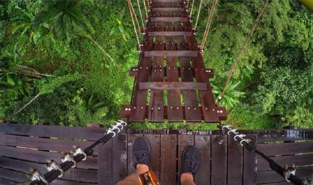 泰国曼谷旅游象岛丛林飞跃一日游丛林冒险