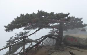 【大别山图片】烟雨大别山,雾锁薄刀峰,风大雾大走山脊。