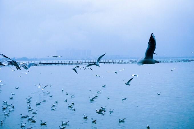滇池风景区(海埂公园)