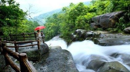 东兴东兴屏峰雨林公园门票图片
