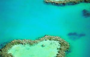 【大堡礁图片】攀桥潜水开飞机... 带你玩转昆士兰