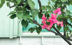 【那霸图片】【冲绳很萌】用一抹蓝色与夏天说再见(五天四晚自由行攻略,看了这篇你就自由了)