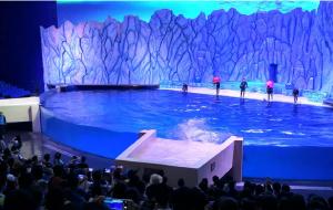 【珠海横琴长隆国际海洋度假区图片】珠海长隆海洋王国两日游