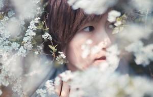 【无锡图片】【蜂首纪念】鼋头渚——春风十里,不如一场樱花雨
