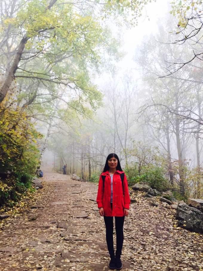 【丁一游记】喇叭沟原始森林公园的秋天:千亩白桦林