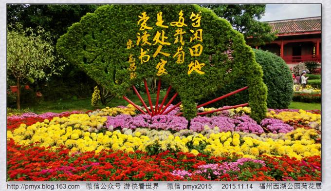 游侠看世界:偶遇福州西湖公园菊花展(原创游记)图片