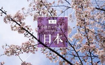 日本 宝藏纪念