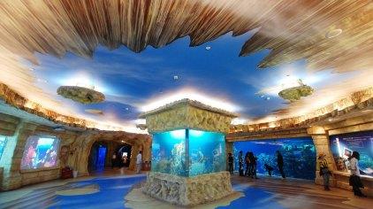 北京海洋馆 北京动物园