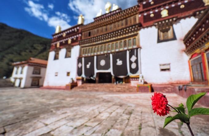 没什么游客,一下车,就是一群藏族小孩儿一拥而上,让你买水果买首饰