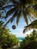马尔代夫大小四季、芙花芬3岛游,与彩虹、佛光、星空相约