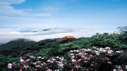 郴州莽山国家森林公园门票图片