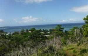 冲绳娱乐-Forest Adventure in Onna