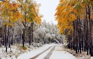 【兴安盟图片】【王小小在路上】2016第一场雪——深秋的多彩之梦(海拉尔~阿尔山~满洲里)