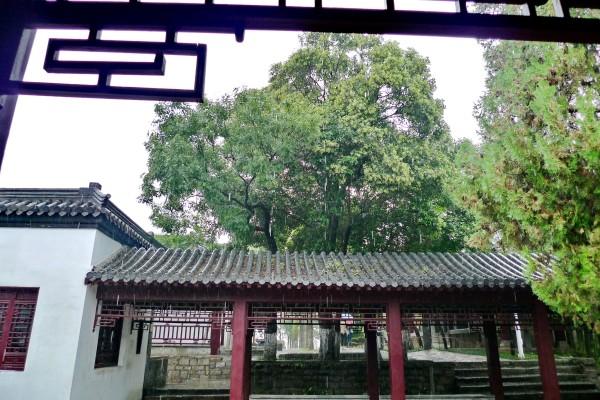 徐州旅游攻略 苏豫鲁皖四省交界古城游---徐州云龙山   放鹤亭始建于