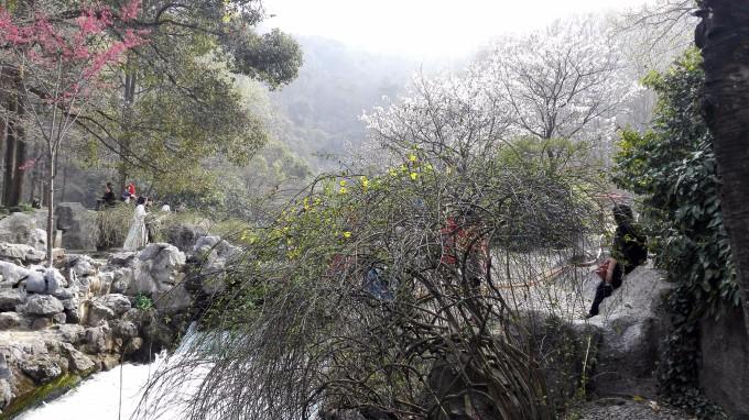 云南自由行之一:杭州,西双版纳