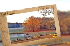 冬日游走法兰西,与浪漫国度的深情邂逅(卢瓦尔河谷、巴黎、普罗旺斯大区、尼斯)