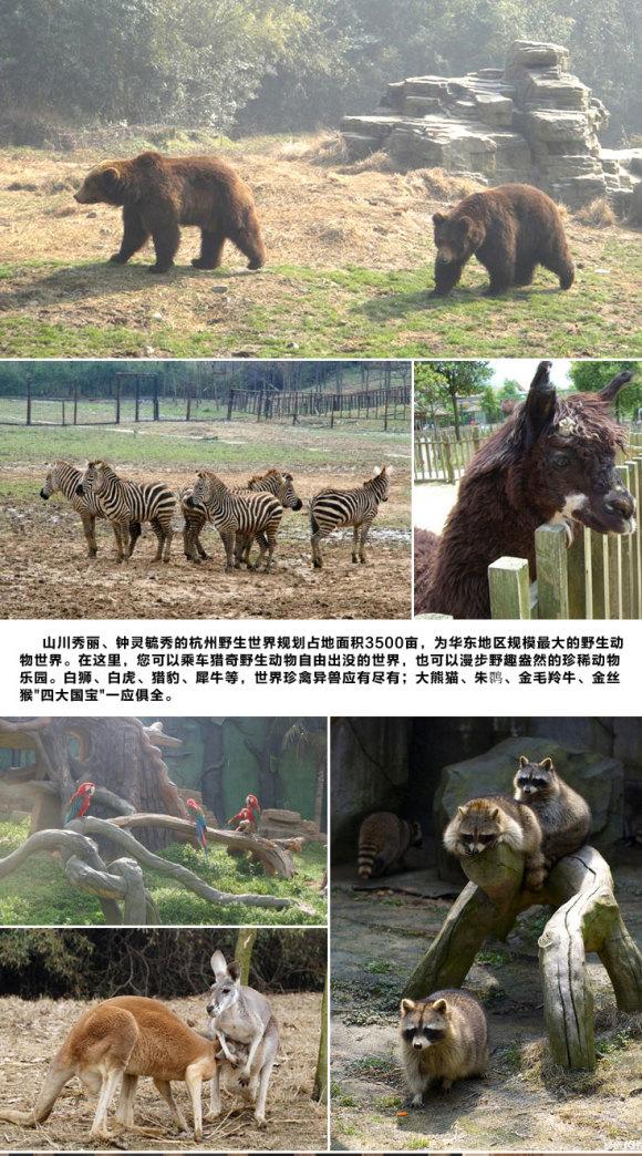 州野生动物园门票