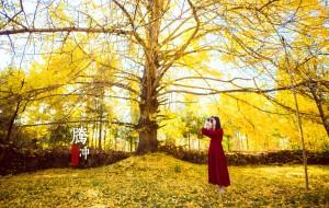 【丽江图片】時光日誌,荡漾在深秋里的黄与蓝(行走滇西南之腾冲、和顺、瑞丽、诺邓、大理)