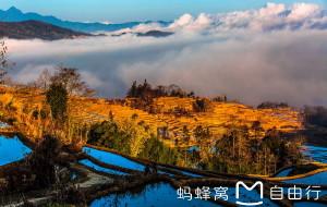 【元阳图片】大地如画,彩云之南:哈尼梯田、罗平油菜花、东川红土地游记