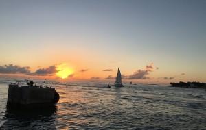 【基韦斯特图片】弗罗里达惊艳之旅--环球影城迪斯尼海洋世界大沼泽公园基韦斯特干龟公园(3)