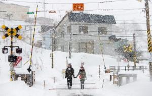 【仙台市图片】北海道旅拍,相爱到世界的尽头