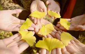 【贺州图片】秋之海洋----寻找南方大地的最后一抹秋色(海洋乡+黄姚古镇)