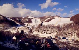 【北海道图片】冬日里美丽的画卷——北海道
