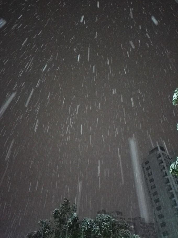 小时候冬天家乡也经常下雪,下的还蛮大,那些没有叶子光秃秃的树木花草