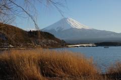 未到樱花季,日本一样精彩(记日本八日游:东京、富士河口湖、京都、大阪)