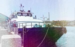 【东山岛图片】走在厦门鼓浪屿&东山岛的168小时