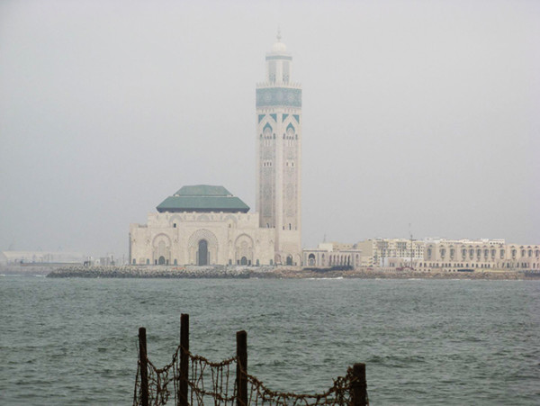 一封Casablanca的来信