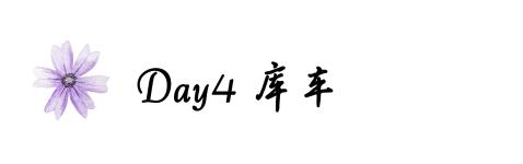 Day4库车