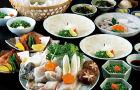 日本东京 玄品河豚浅草店神乐坂店 午餐晚餐套餐预订(即时确认+虎河豚美食+送清凉饮品)