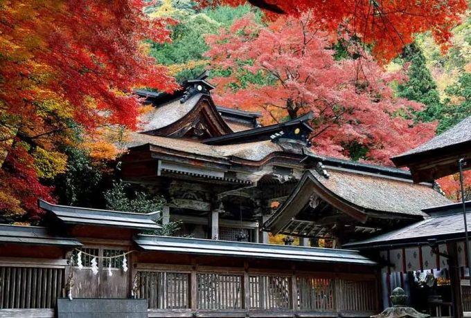 第一次去日本,你不得不知道的实力干货 旅游资讯 第30张