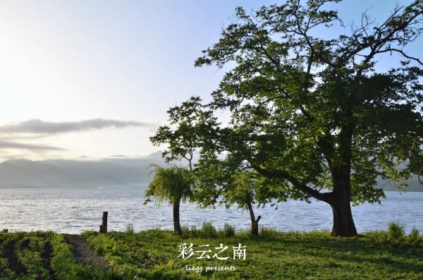 云南 蓝天白云 心脏/湖边的小船