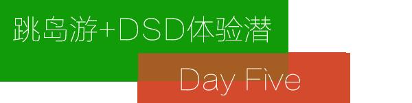 Day 5:跳岛游+DSD体验潜水