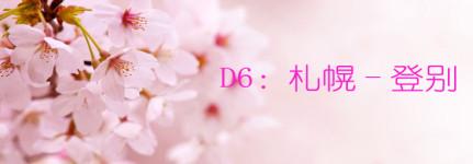 D6:札幌-登别